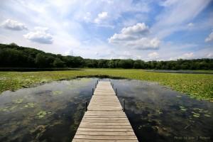 Lone-Lake-dock0