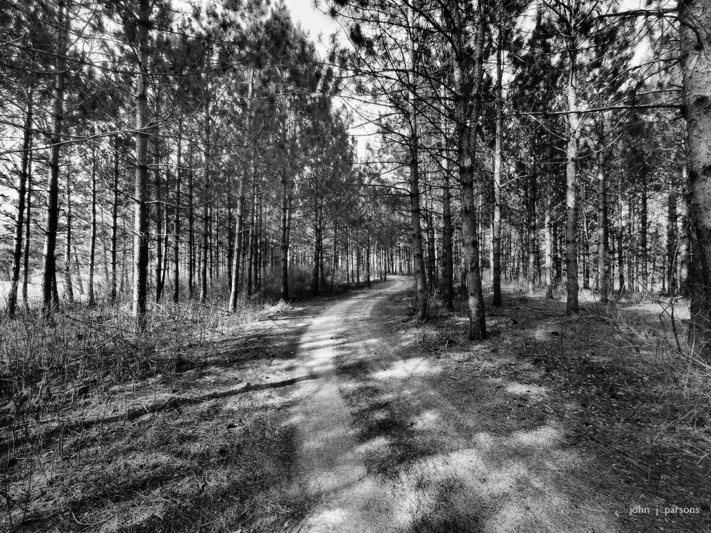 path2828